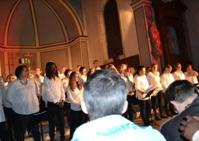 concert Vannes - fete du don2015 (10)