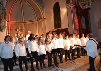 concert Vannes - fete du don2015 (11)