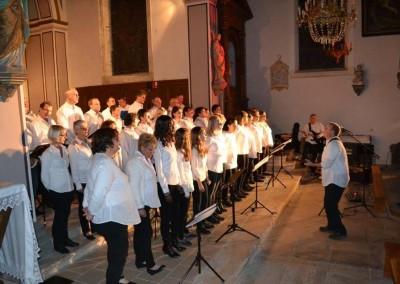 concert Vannes - fete du don2015 (12)