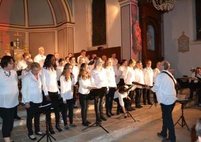 concert Vannes - fete du don2015 (13)