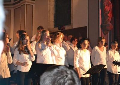 concert Vannes - fete du don2015 (8)